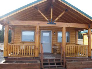 Ocean View Cabin on the Bluff (Lupine Cabin) - Ninilchik vacation rentals