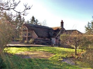 Thatched Cottage Annex - Pulborough vacation rentals