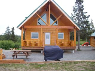Ocean View Cabin on the Bluff (Poppy Cabin) - Ninilchik vacation rentals
