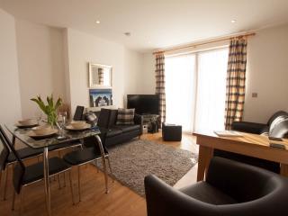 Plas Tudor Apartment - Aberystwyth vacation rentals