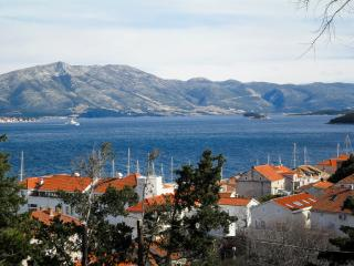 Apartment Tomislav - 51821-A1 - Korcula vacation rentals