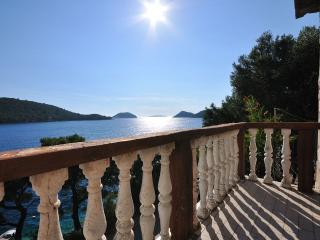Apartment Graciela - 53211-A1 - Island Lastovo vacation rentals