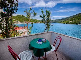 Apartments Ljubo - 53961-A4 - Island Lastovo vacation rentals