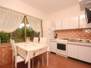 Apartments Nerina - 73121-A2 - Novigrad vacation rentals