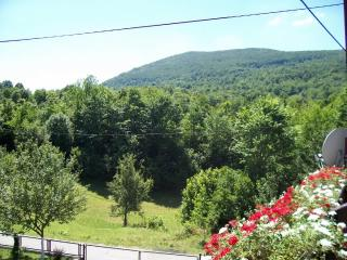 Rooms MARIJA - 80611-S1 - Dreznicko Seliste vacation rentals