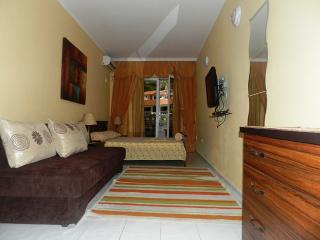 Apartments and Rooms Zoran - 93321-S2 - Bar Municipality vacation rentals