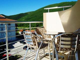 Apartments Darko - 93671-A1 - Budva vacation rentals