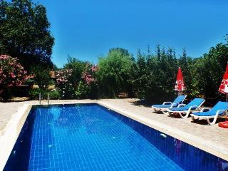 Ozlem Evi - Kayakoy vacation rentals