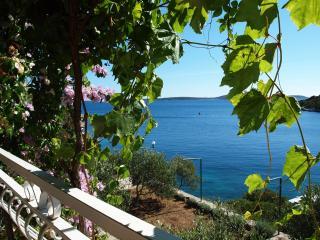 35896 A1(5+1) - Cove Ljubljeva (Vinisce) - Sevid vacation rentals