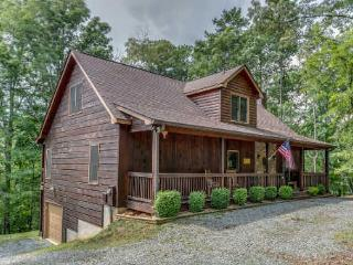 Blue Garnet Cabin - Ellijay vacation rentals