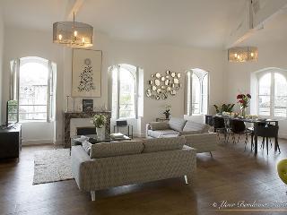 Splendid contemporary three bedroom apartment at t - Bordeaux vacation rentals