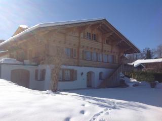 Chalet Seeblick - Aeschi b. Spiez vacation rentals