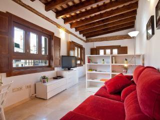 Charming loft Plaza Redonda -3 - Valencia vacation rentals