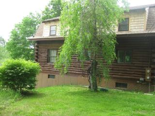 Cozy Cabin at the base of Mt Monadnock - Jaffrey vacation rentals