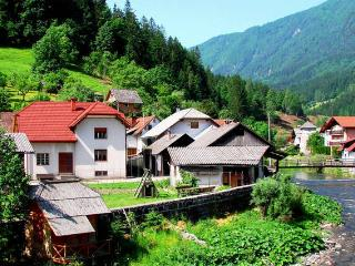 Fabulous large Slovenian house to rent in Luce - Luce vacation rentals