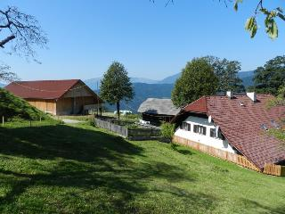 Tourist farm VISOČNIK - Ljubno vacation rentals