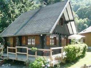 In the heart of the Pyrenees, beautiful chalet with 2 bedrooms and terrace - Beaucens vacation rentals