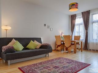 Apartment near center / zoo - Saxony vacation rentals
