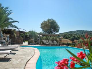 Caseddu A Vigna-Rustic Corsican holiday house with 1 bedroom and shared pool - Giuncheto vacation rentals