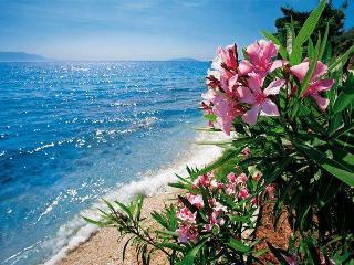 Gorgeous nature studio apartment 2 min from sea - Brela vacation rentals
