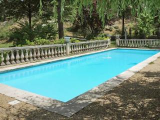 Rustic apartment in the heart of Berre-les-Alpes, with private pool and fantastic garden - Roquebilliere vacation rentals