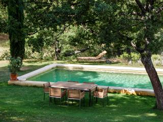 In the heart of Ansouis, immaculate and idyllic house with garden and pool - Ansouis vacation rentals