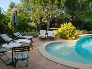 In the heart of the Varoise country, charming gite with garden and pool - Les Mayons vacation rentals