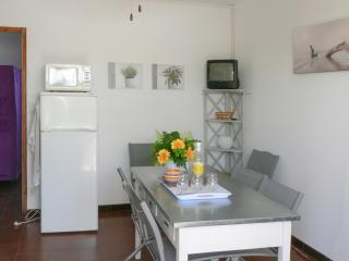 Villa facing the sea in Frontignan with 3 bedrooms, garden, terrace and all mod cons - Le Grau Du Roi vacation rentals
