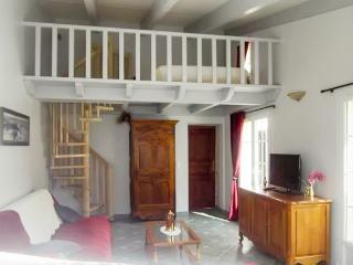 Traditional house in l'Île de Ré with spacious patio, very close to the beach - Rivedoux-Plage vacation rentals