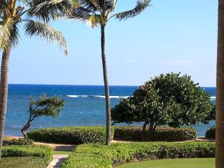 Oceanview Waipouli Beach with Contemporary Art - Kapaa vacation rentals
