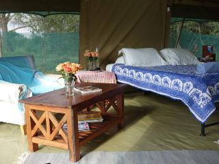 Ol Pejeta Bush Camp - Luxury Tent - Nanyuki vacation rentals
