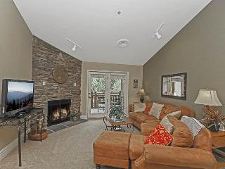 Baskins Creek 508 - Gatlinburg vacation rentals