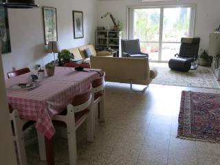 Spacious, 3 bedroom huge balcony, view of greenery - Tel Aviv District vacation rentals