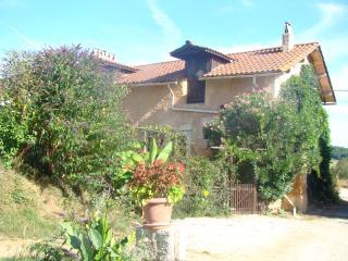 Tobacco cottage - Saint-Martin-de-Ribérac vacation rentals