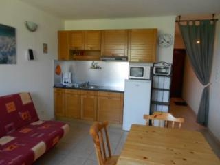 Appartement ARMAZAN vue sur la Montagne - Saint-Lary-Soulan vacation rentals