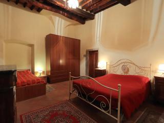 LA CAMELIA (Castiglion Fiorentino) - Castiglion Fiorentino vacation rentals