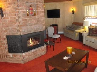 Mt. Princeton Getaway - Buena Vista vacation rentals