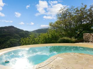 Beautiful stone house in the Alpes-de-Haute-Provence with swimming pool and mountain views - Lachau vacation rentals