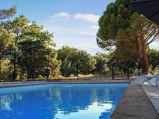 Traditional family house in Provence with swimming pool and garden - Cucuron vacation rentals