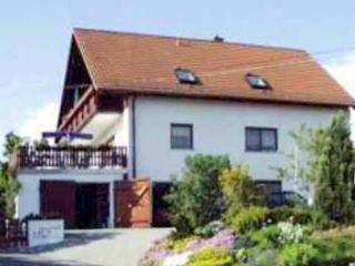 Family-friendly apartment near Dresden, Germany with 2 bedrooms, terrace and pool - Rabenau vacation rentals