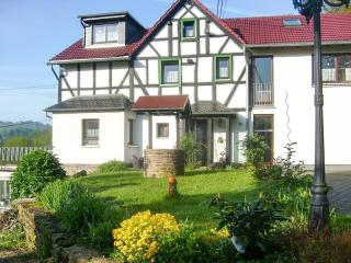 Hillside apartment for 4 people in beautiful Rhineland, Germany - Waldbreitbach vacation rentals