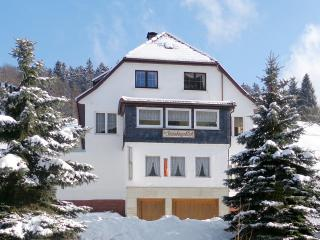 Cute 2-bedroom apartment in Thuringia, Germany, with balcony and mountain views - perfect for nature - Langenbach vacation rentals