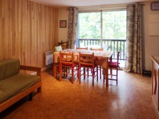 Lovely apartment in Saint-Lary with 2 bedrooms and private balcony - Midi-Pyrenees vacation rentals