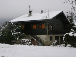Magnificent chalet in Alex, French Alps, with balcony and garden - Haute-Savoie vacation rentals