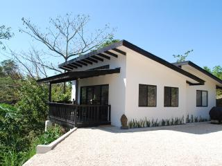 Stunning one bedroom with ocean and jungle view - Santa Teresa vacation rentals
