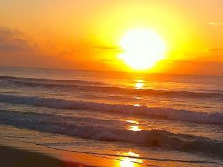 Mona Vale Beach side house 250 mts walk to beach - Sydney vacation rentals