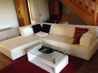 Apartmany Lipno 11 - Lipno nad Vltavou vacation rentals