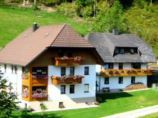 Vacation Apartment in Triberg im Schwarzwald - 624 sqft, 2 Bedroom (# 6479) - Schiltach vacation rentals