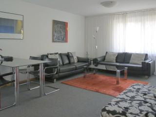 Vacation Apartment in Freiburg im Breisgau - 700 sqft, max. 4 people (# 6481) - Baden Wurttemberg vacation rentals