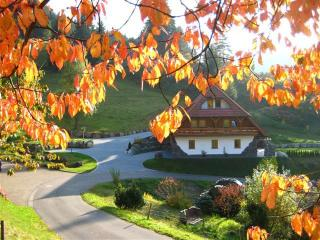 Vacation Apartment in Triberg im Schwarzwald - 753 sqft, 2 bedrooms, max. 6 persons (# 6502) - Black Forest vacation rentals
